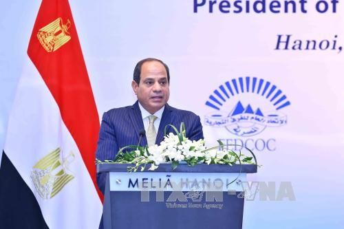 Egypt's President concludes state visit to Vietnam - ảnh 1
