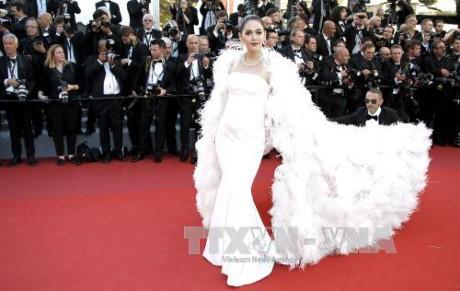 ប្រារព្ធមហោស្រពខ្សែភាពយន្ត Cannes ឆ្នាំ២០១៧ - ảnh 1