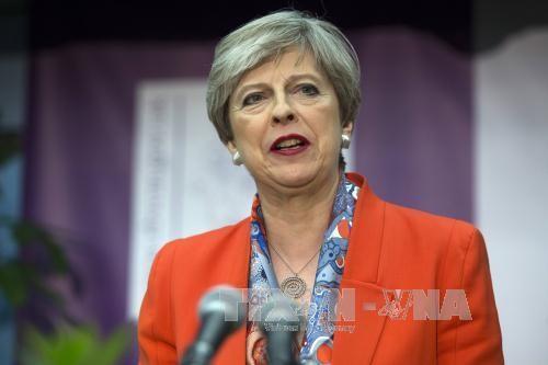 នាយករដ្ឋមន្រ្តីអង់គ្លេសលោកស្រី Theresa May មិនផ្លាស់ប្ដូររដ្ឋមន្រ្តីសំខាន់ៗ - ảnh 1