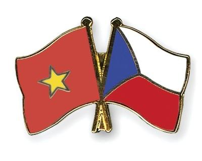 Вьетнамская диаспора в Чехии приняла участие в 1-м многонациональном культурном фестивале - ảnh 1