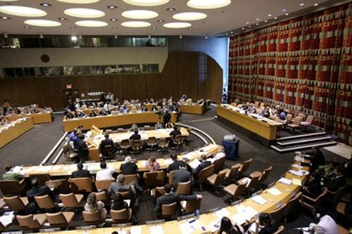Вьетнам избран членом ЭКОСОС с большим количеством голосов «за» - ảnh 1