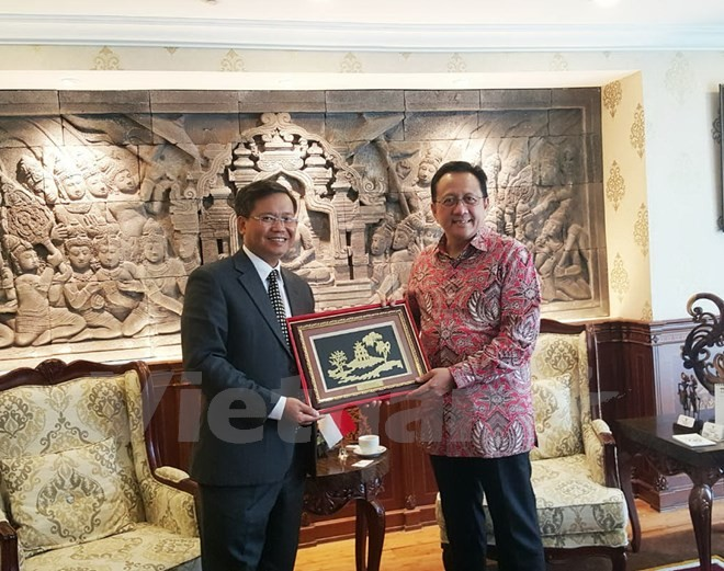 Отношения с Вьетнамом являются приоритетом в региональной политике Индонезии - ảnh 1