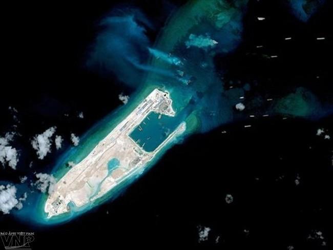Вьетнамские организации во Франции выразили протест Китаю за совершение полётов на риф Чытхап - ảnh 1