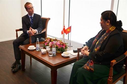 Тонг Тхи Фонг приняла участие в программе «Дни Вьетнама в Дании» - ảnh 1