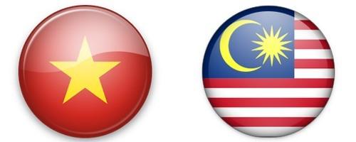 Вьетнам и Малайзия расширяют всеобъемлющее сотрудничество - ảnh 1