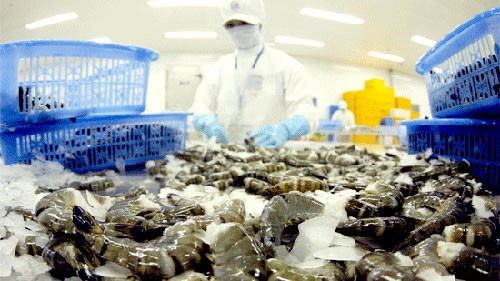 US leads Vietnam's seafood importers  - ảnh 1
