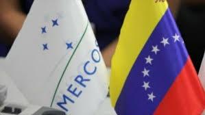 Venezuela hoists Mercosur flag in show of taking on presidency  - ảnh 1