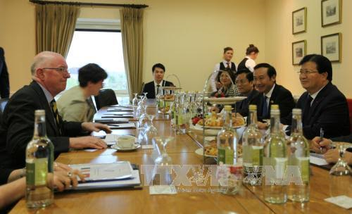 Vietnam seeks to boost comprehensive cooperation with Ireland  - ảnh 1
