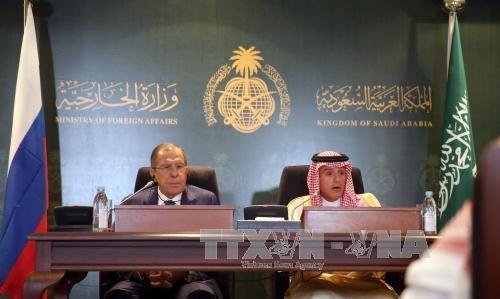 Russia, Saudi Arabia discuss establishing de-escalation zones in Syria - ảnh 1