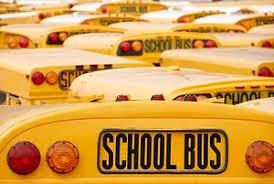 American yellow school bus  - ảnh 2