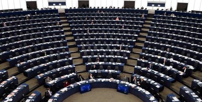 สภายุโรปเรียกร้องให้ยูเครนให้ความเคารพสิทธิของชนกลุ่มน้อย - ảnh 1