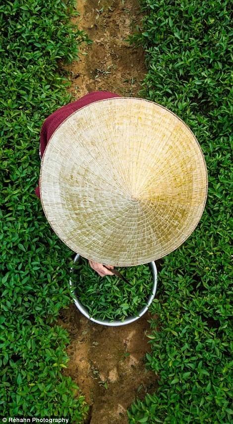 ความงามของเวียดนามจากมุมมองของช่างภาพฝรั่งเศส - ảnh 9