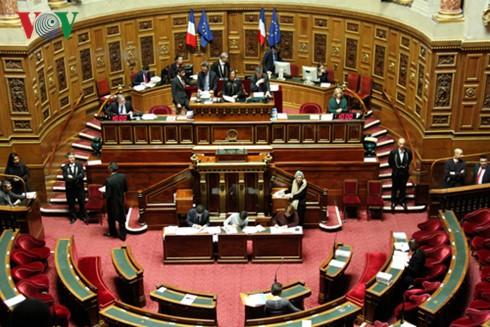 รัฐสภาฝรั่งเศสอนุมัติข้อตกลงพีซีเอระหว่างเวียดนามกับอียู - ảnh 1