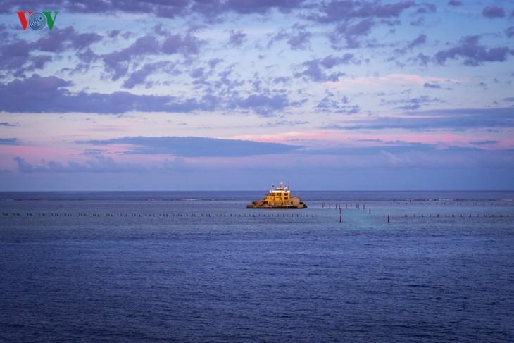 ความสวยงามของหมู่เกาะเจื่องซา - ảnh 5