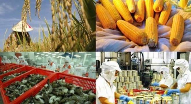 มูลค่าการส่งออกสินค้าการเกษตร ป่าไม้และสัตว์น้ำใน๘เดือนที่ผ่านมาอยู่ที่กว่า๒หมื่นล้านดอลลาร์สหรัฐ   - ảnh 1