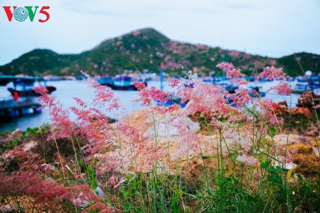 ความสวยงามของเกาะบิ่งบา - ảnh 14