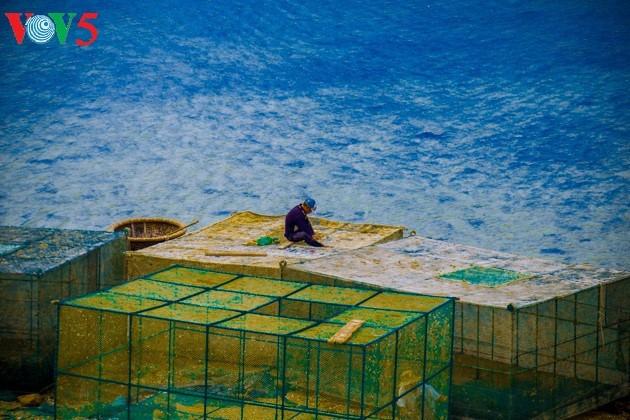 ความสวยงามของเกาะบิ่งบา - ảnh 17
