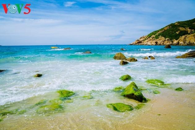 ความสวยงามของเกาะบิ่งบา - ảnh 3