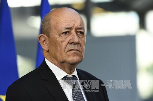 ฝรั่งเศสให้การสนับสนุนความพยายามแก้ไขวิกฤตในลิเบีย - ảnh 1