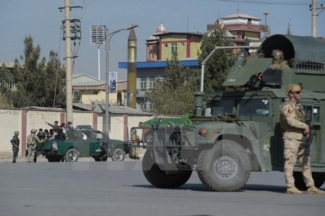 นาโต้เริ่มภารกิจฝึกอบรมให้แก่กองทัพอัฟกานิสถาน - ảnh 1