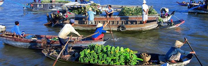 ปี2014เขตที่ราบลุ่มแม่น้ำโขงพยายามลดกว่า4หมื่นครอบครัวยากจน - ảnh 1