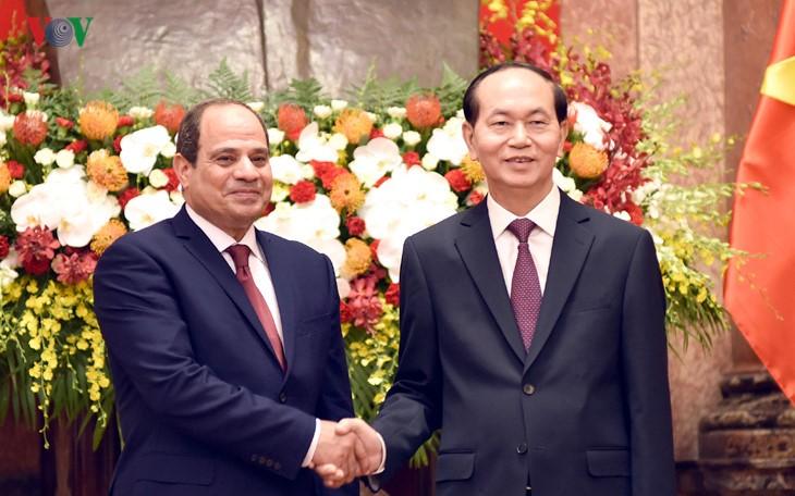เวียดนาม-อียิปต์ เห็นพ้องผลักดันความร่วมมือที่เอื้อประโยชน์ต่อกัน - ảnh 1