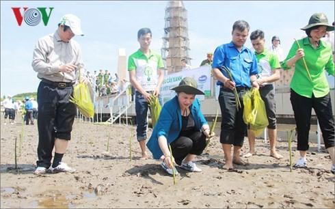 Nguyen Thi Kim Ngan 베트남 국회의장, 까마우, 0001 GPS국가 좌표에서 식목 행사 참석 - ảnh 1