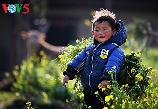 Sắc màu của hạnh phúc qua những khuôn hình    - ảnh 19