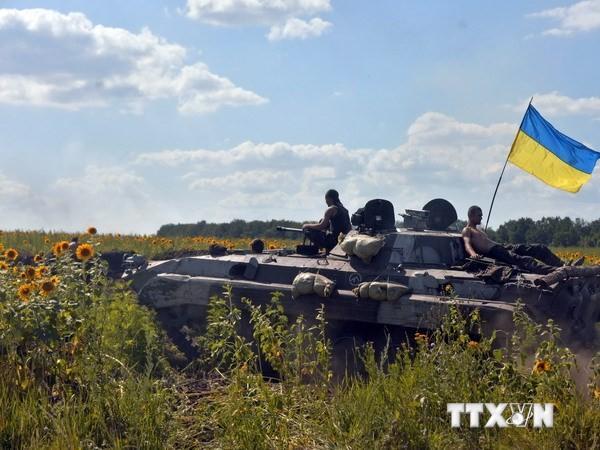 Украина запустила специальную операцию на востоке страны  - ảnh 1