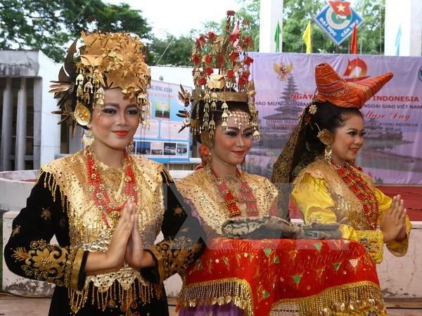 В городе Кантхо состоялся праздник индонезийской культуры  - ảnh 1