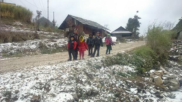 Жители уезда Меовак борются с морозом - ảnh 8