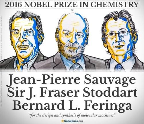 Нобелевскую премию по химии получили ученые из Франции, США и Нидерландов - ảnh 1