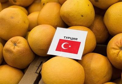Россия сняла запрет на ввоз в страну некоторых турецких сельхозпродуктов  - ảnh 1