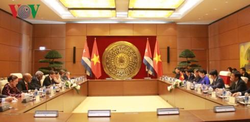 Спикер вьетнамского парламента провела переговоры с кубинским коллегой - ảnh 2