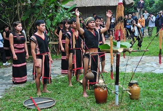 Праздник народности Седанг, посвященный собранному урожаю  - ảnh 1