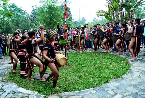 Праздник народности Седанг, посвященный собранному урожаю  - ảnh 3