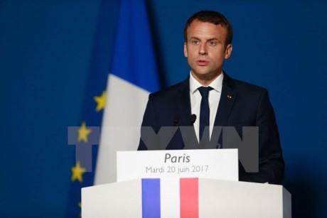 Макрон уверен, что Франция может стать локомотивом развития ЕС - ảnh 1