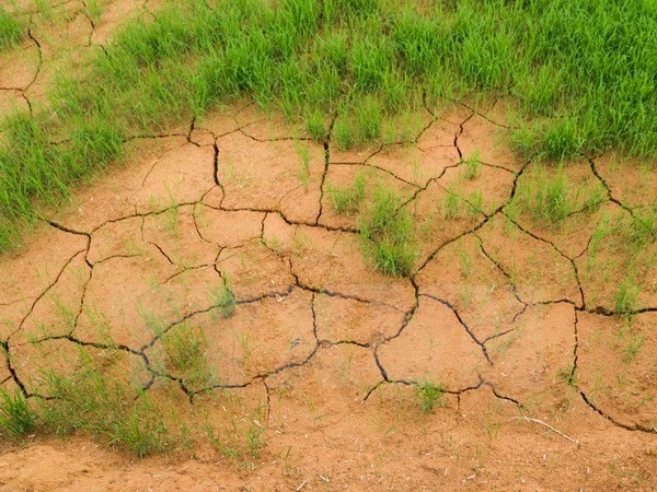 Реализовано Парижское соглашение по климату в центральной части Вьетнама и на плато Тэйнгуен - ảnh 1