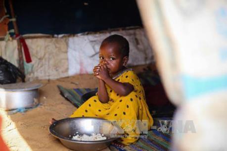 ООН призвала предотвратить голод, угрожающий 20 млн. человек в Йемене, Сомали, Южном Судане и Нигери - ảnh 1