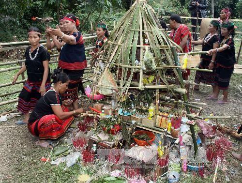 Праздник эксгумации и перезахоронения «Ариеу Пинг» народности Пако  - ảnh 1
