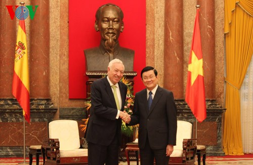 Vietnam, Spain to boost economic cooperation  - ảnh 1