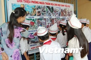 Nowegian NGOs review social projects in Binh Dinh province - ảnh 1