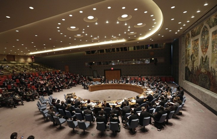 Russia, China veto UN resolution on referring Syria to international court - ảnh 1