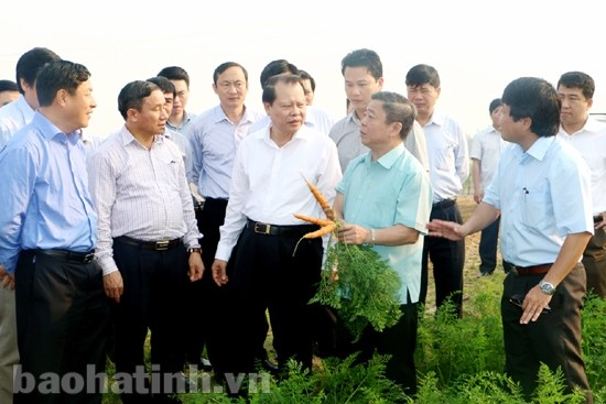 Deputy PM applauds Ha Tinh province's high GDP growth - ảnh 1