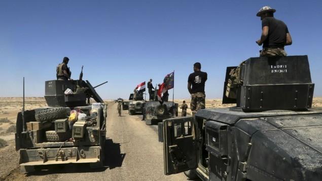 IS weakens in Iraq - ảnh 1