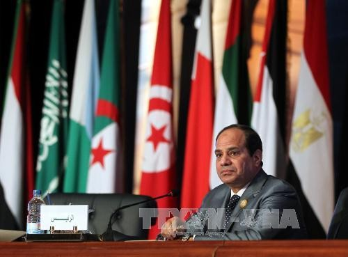 Egypt: President Sisi announces bid for re-election in 2018 - ảnh 1