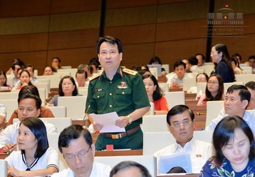 Parlamento vietnamita analiza borrador de Ley de protección y desarrollo forestal - ảnh 1