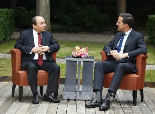 Premieres vietnamita y holandés sostienen conversaciones - ảnh 1