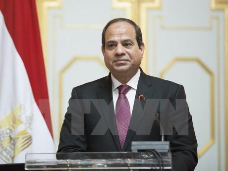 Presidente egipcio ratifica la ley para formar la Comisión Electoral Nacional  - ảnh 1