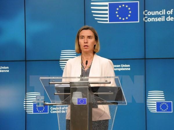 La Unión Europea expresa la solidaridad con Vietnam ante las pérdidas del tifón Damrey - ảnh 1